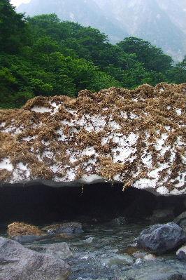 2010春 陶器市 031 谷川岳