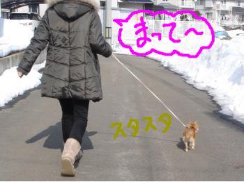 snap_akiyu2_201122133752.jpg