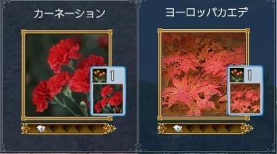 ヨーロッパの植物