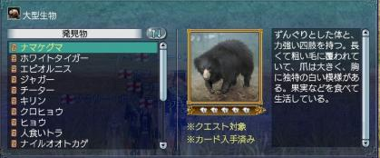 022011 ナマケグマ
