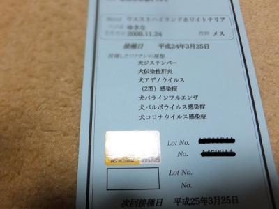 DSCF1242.jpg