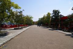 s-DSC02541.jpg