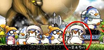 12・19ペンギンいっぱい!2