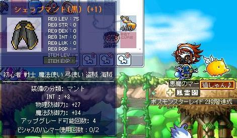 6・221発成功マント