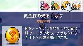 8・11豚の卵