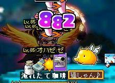 9・8骨魚カード