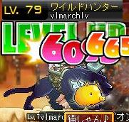 12・21WH79LV