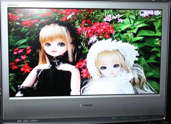 IMG_0978_R_R.jpg