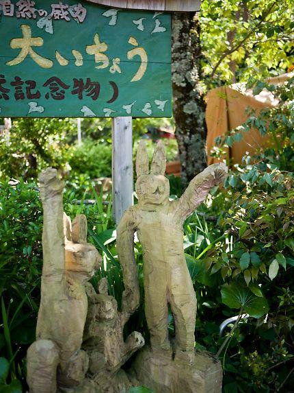 伊那下神社 精霊の森
