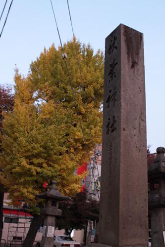 秋葉神社と銀杏