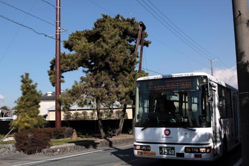 名勝左富士の前を走るバス