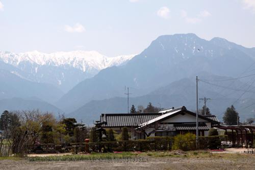 池田町の民家の丸ポスト