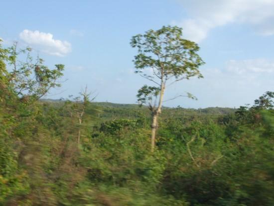 Bolinao hilltop2