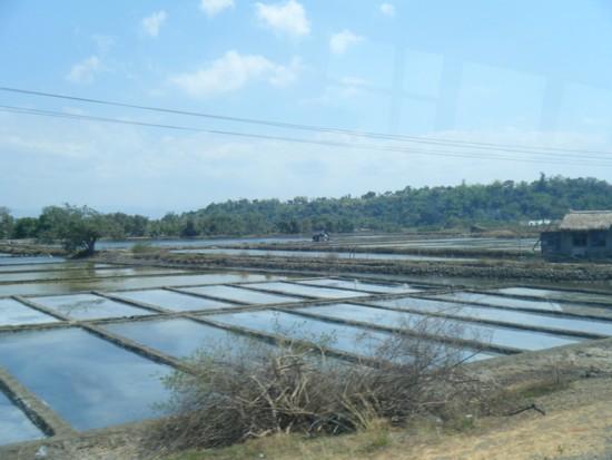 Salt field 1