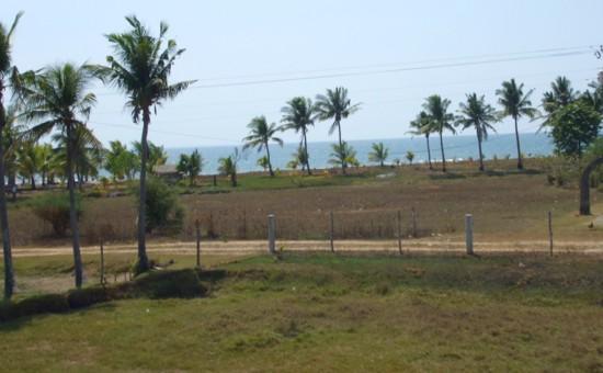 Sea coast1