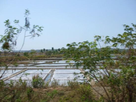 Salt field 2