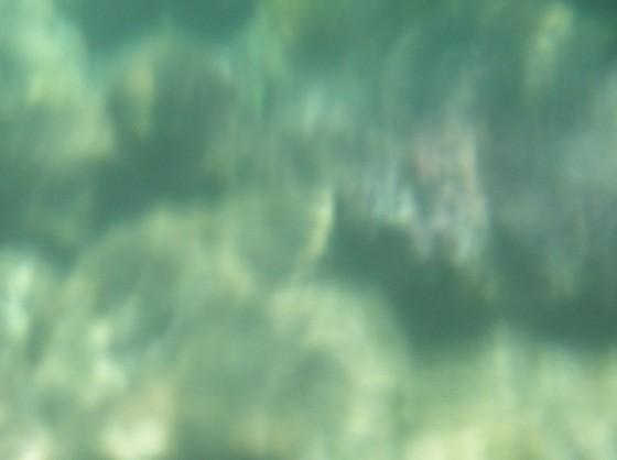 la laguna f3