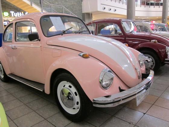 Sexy beetle5