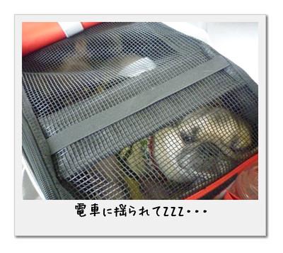 image01_20110506002642.jpg