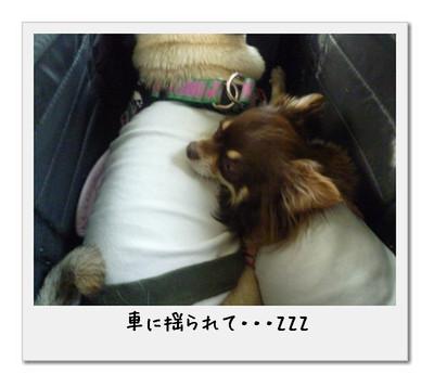 image03_20110506002642.jpg
