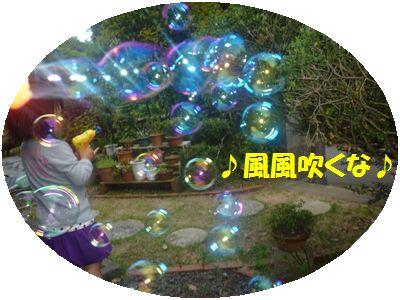image12_20110508140556.jpg