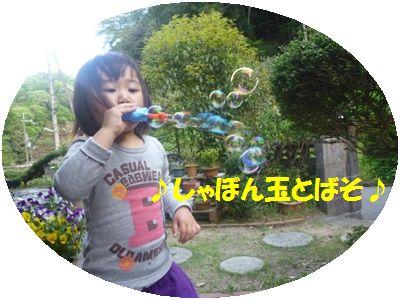 image13_20110508140555.jpg