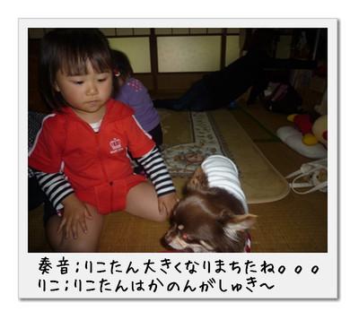 image1_20110506002732.jpg