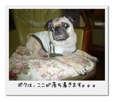 image4_20110506005153.jpg