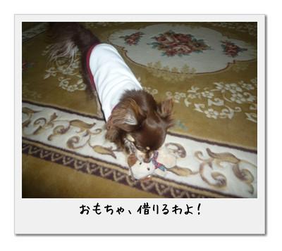 image4_20110506010546.jpg