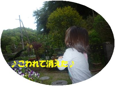 image4_20110508132959.jpg