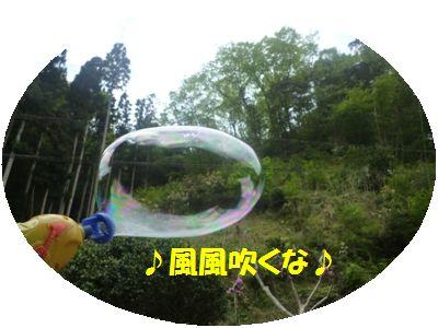 image5_20110508133249.jpg
