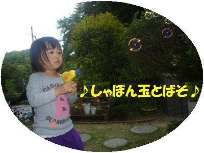image6_20110508133249.jpg