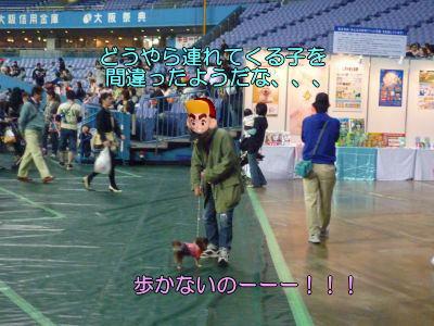 image8_20110511165117.jpg
