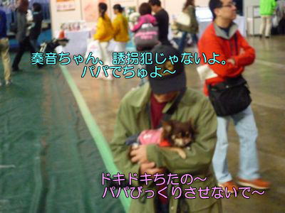 image9_20110511165116.jpg
