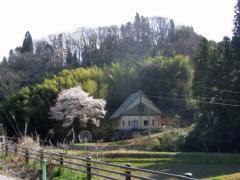 2010_0410_04.jpg
