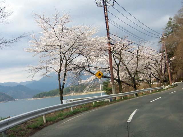 2010_0418_27.jpg