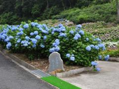 2010_0613_12.jpg