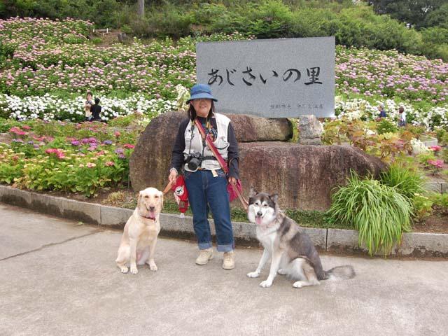 2010_0613_13.jpg