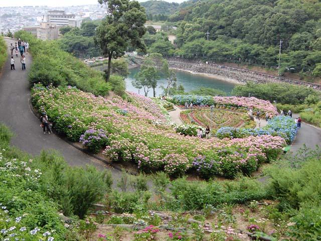 2010_0613_21.jpg