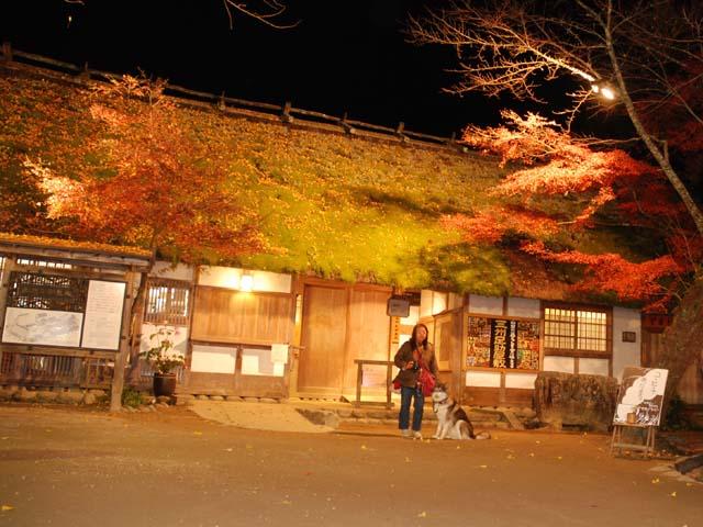 2010_1130_10.jpg