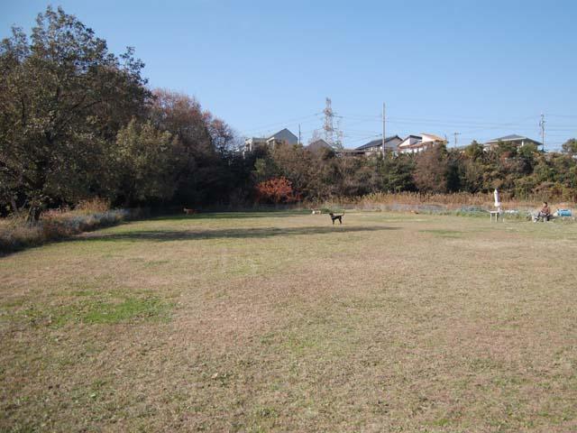 2010_1219_06.jpg