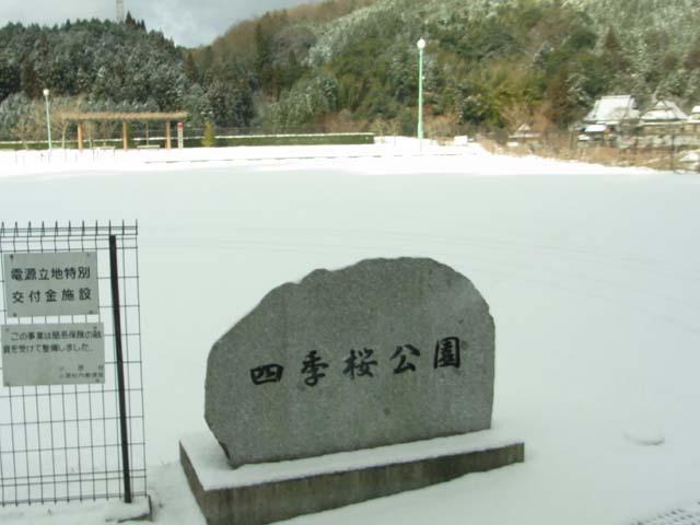 2011_0116_03.jpg