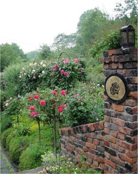 rose garden annan