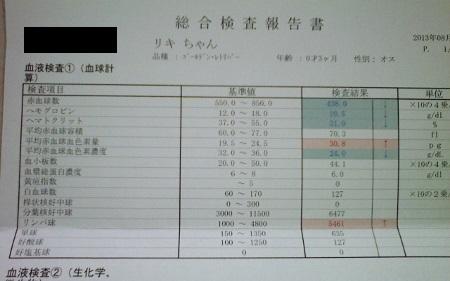 NEC_0341 (450x281)2