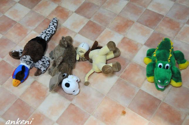 2011.04 077  おもちゃ