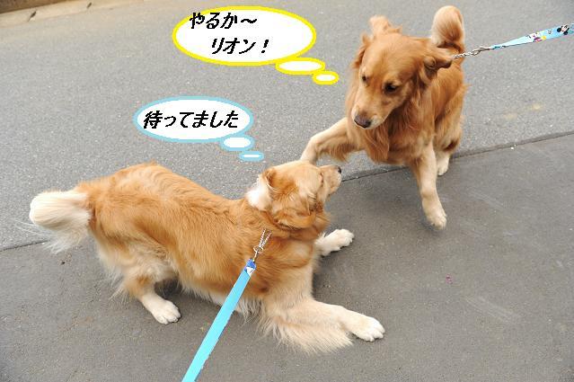 082  リオン&ケニー
