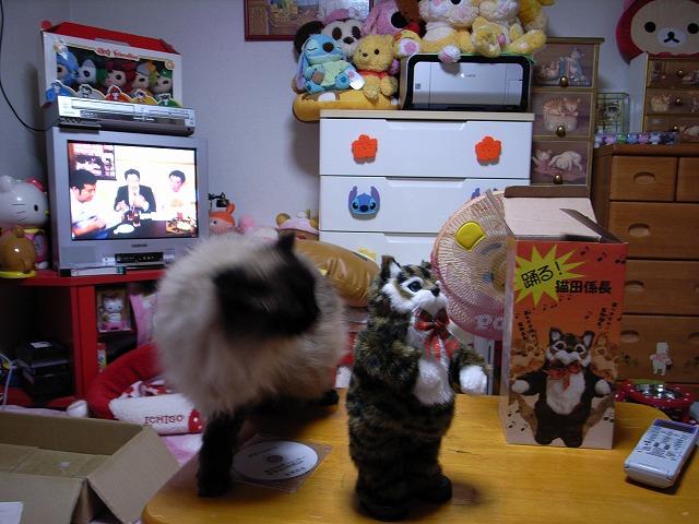 猫田係長4