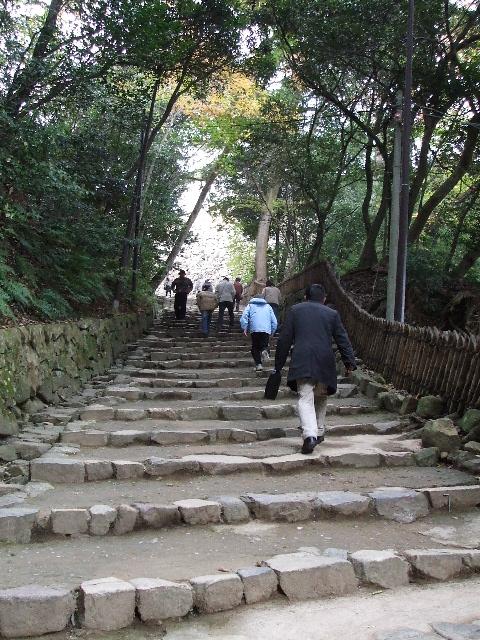 長い階段・・・