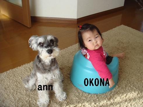 ANN&OKONA