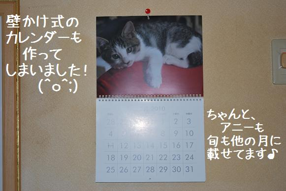 DSC_0195_20100105000649.jpg